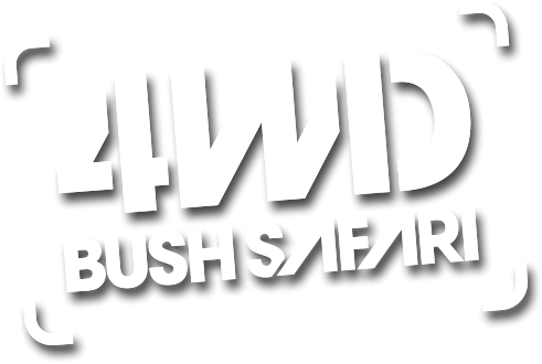 4wd Bush Safari (video)